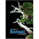 The best of Bonsai Editie 2001.