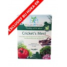 Cricket's Mest