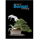 The best of Bonsai in Europe - 5