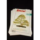 Bonsai Today Magazine - Engels (back issues) - Set #70, 71, 72, 77