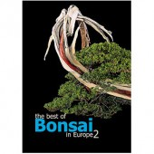 The best of Bonsai in Europe - 2